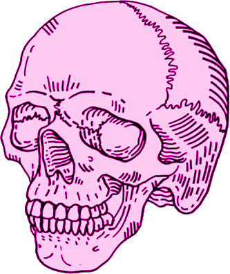 Pink drawing skull. Illustration pinterest illustrations