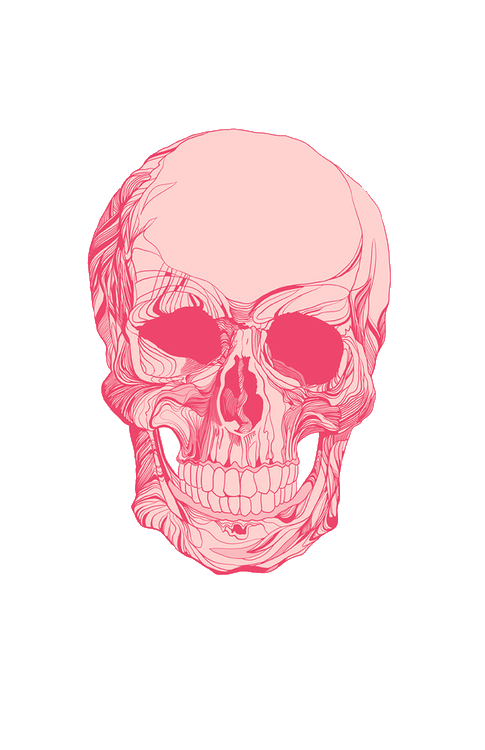 Pink drawing skull. Transparent uploaded by leyla
