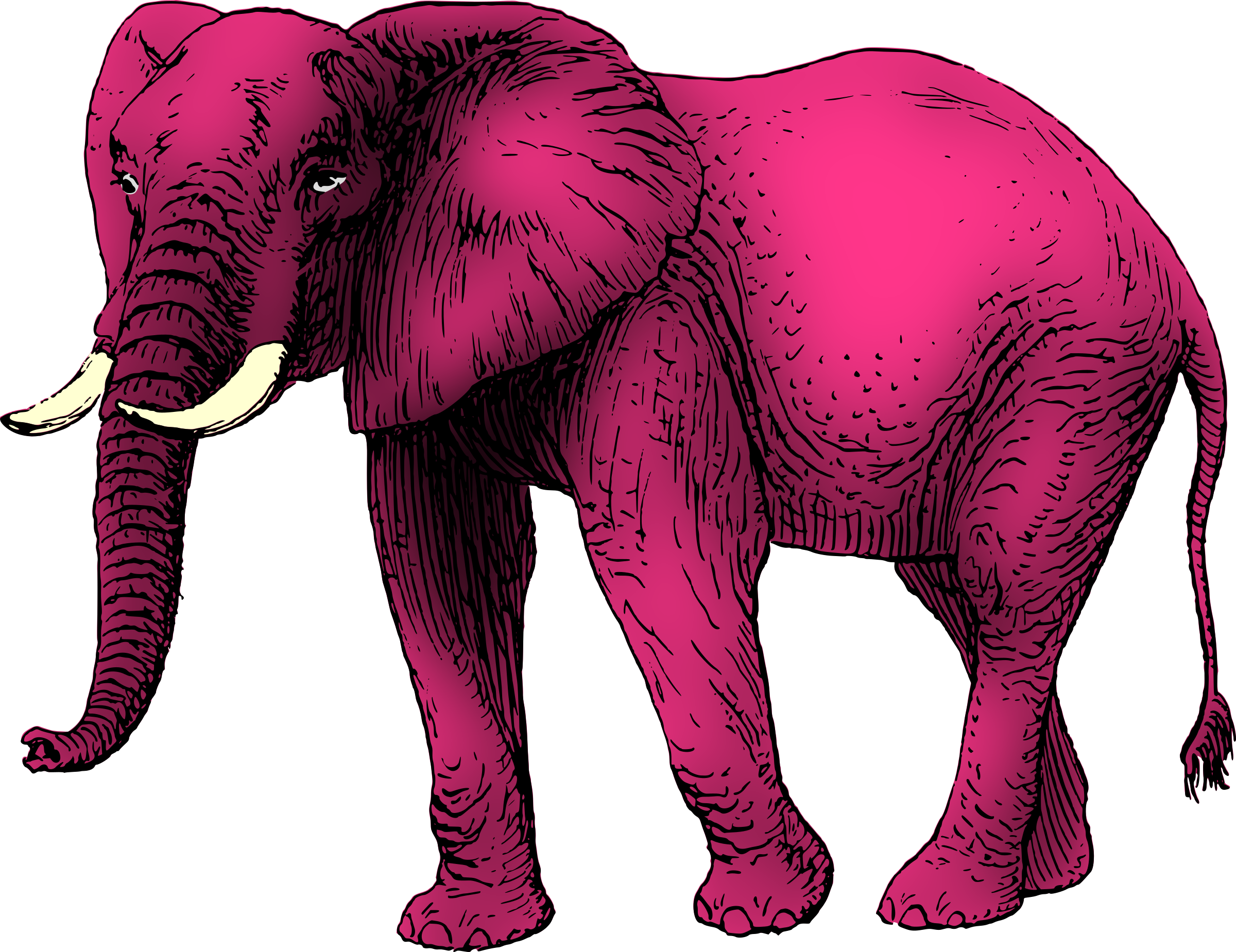 Elephants svg purple grey. Pink elephant icons png