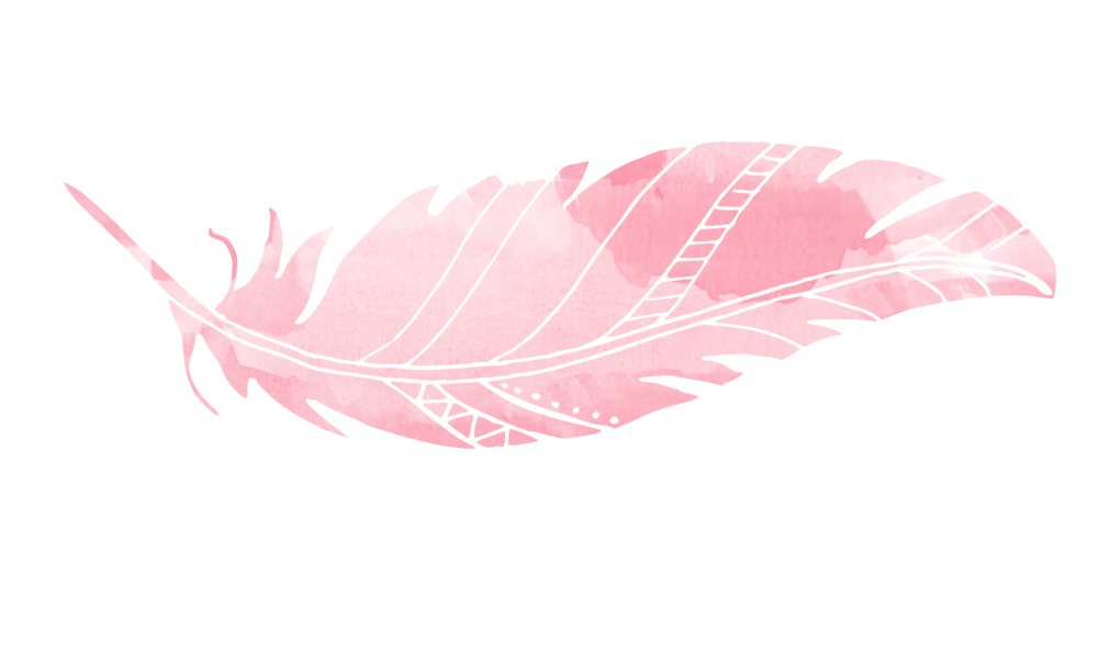 Pink feather png. Animal transprent free download