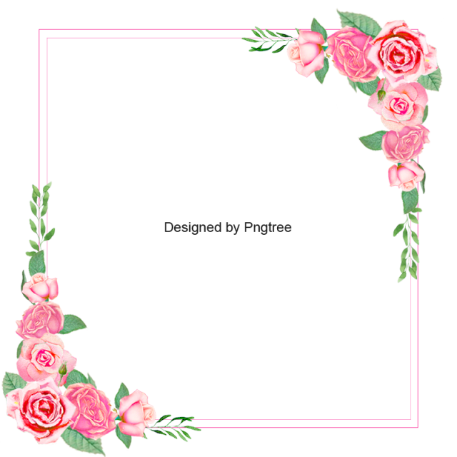 Pink floral border png. Flower rose frame backdrop