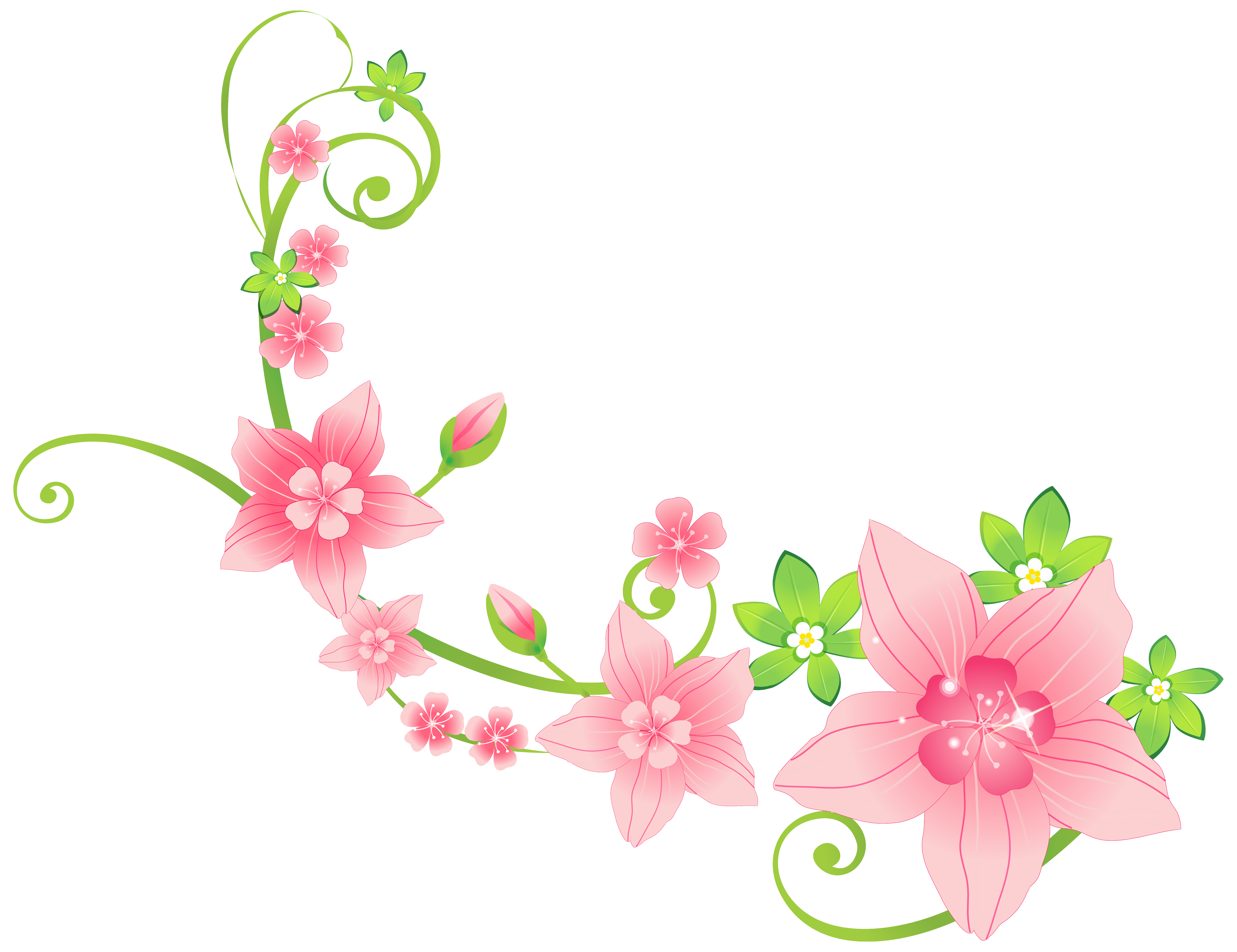 flowers ornaments png