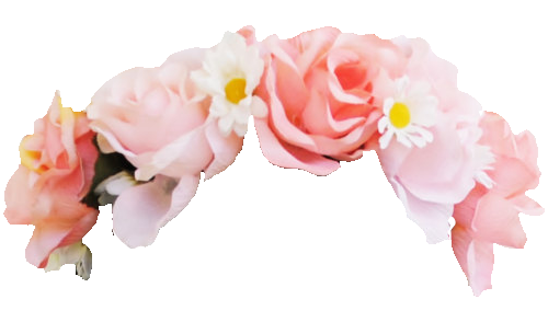 Pink flower crown png. Transparent pictures free icons