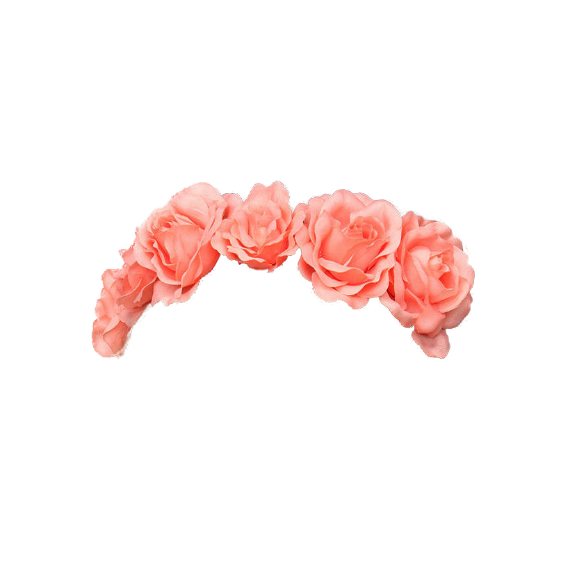 Png flowers tumblr. Flower crown transparent pictures
