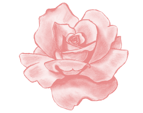 Pink flower png tumblr. Image about in transpa