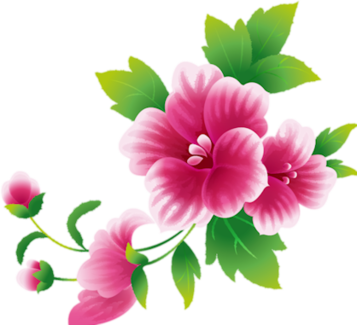Pink flowers png. Index of users tbalze