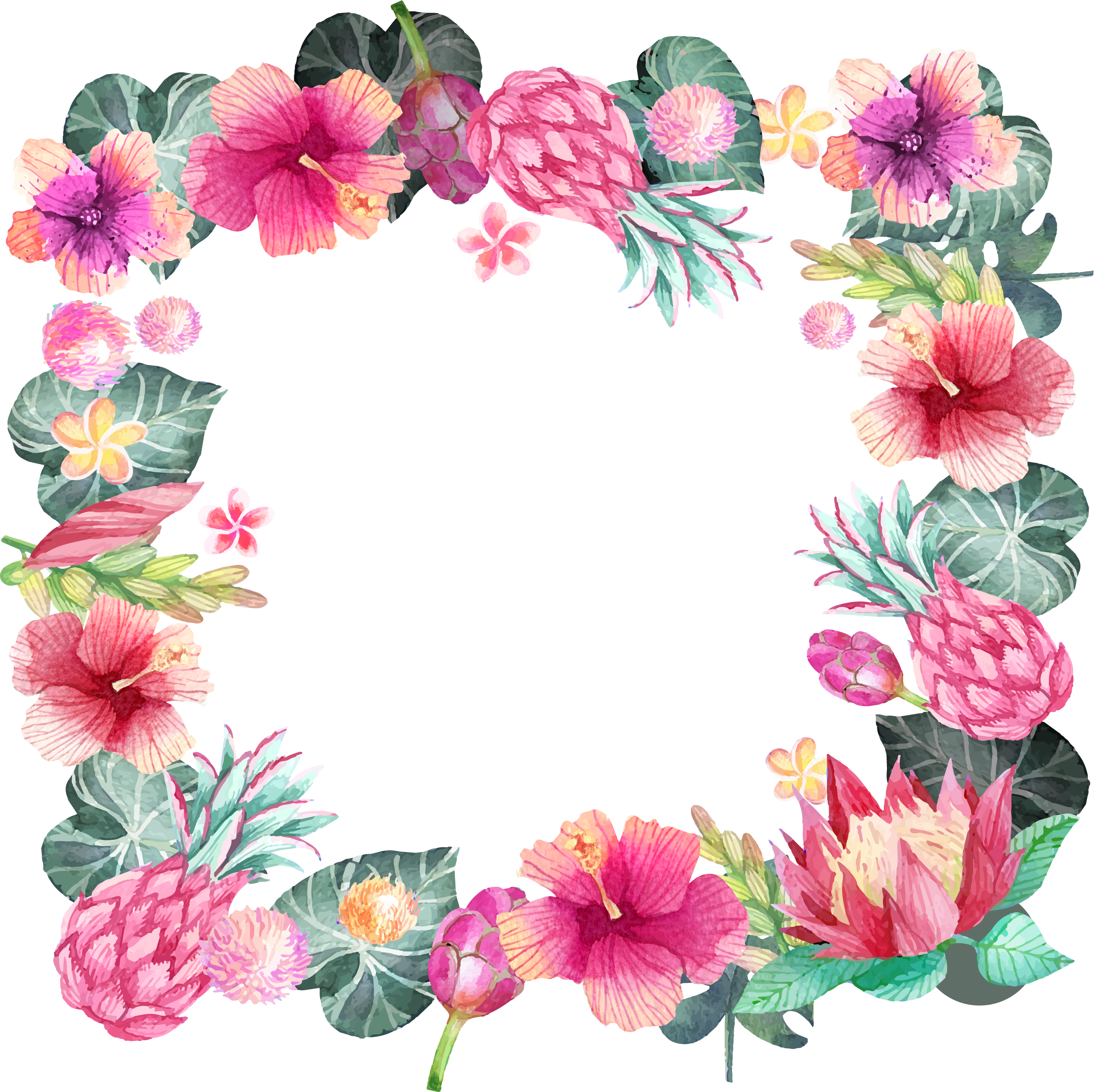 Pink Hibiscus Border Transparent Png Clipart Free Download Ya