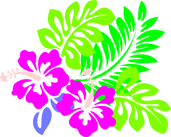 Png images of tropical flower vines. Drawings flowers leaves and