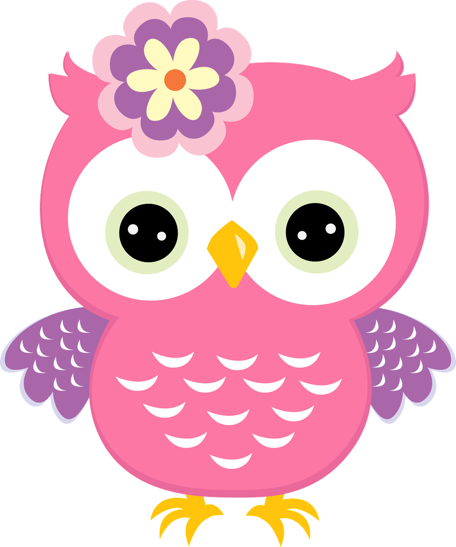 Pink owl png. With flower owls pinterest
