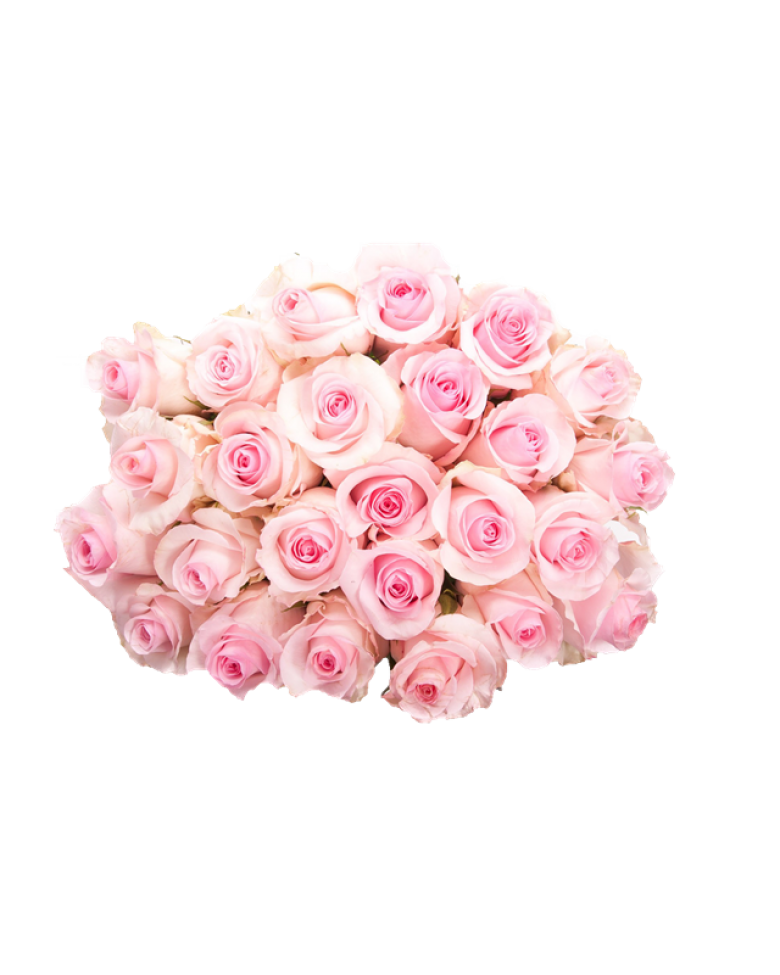 Pink roses bouquet png. Flowers pic mart