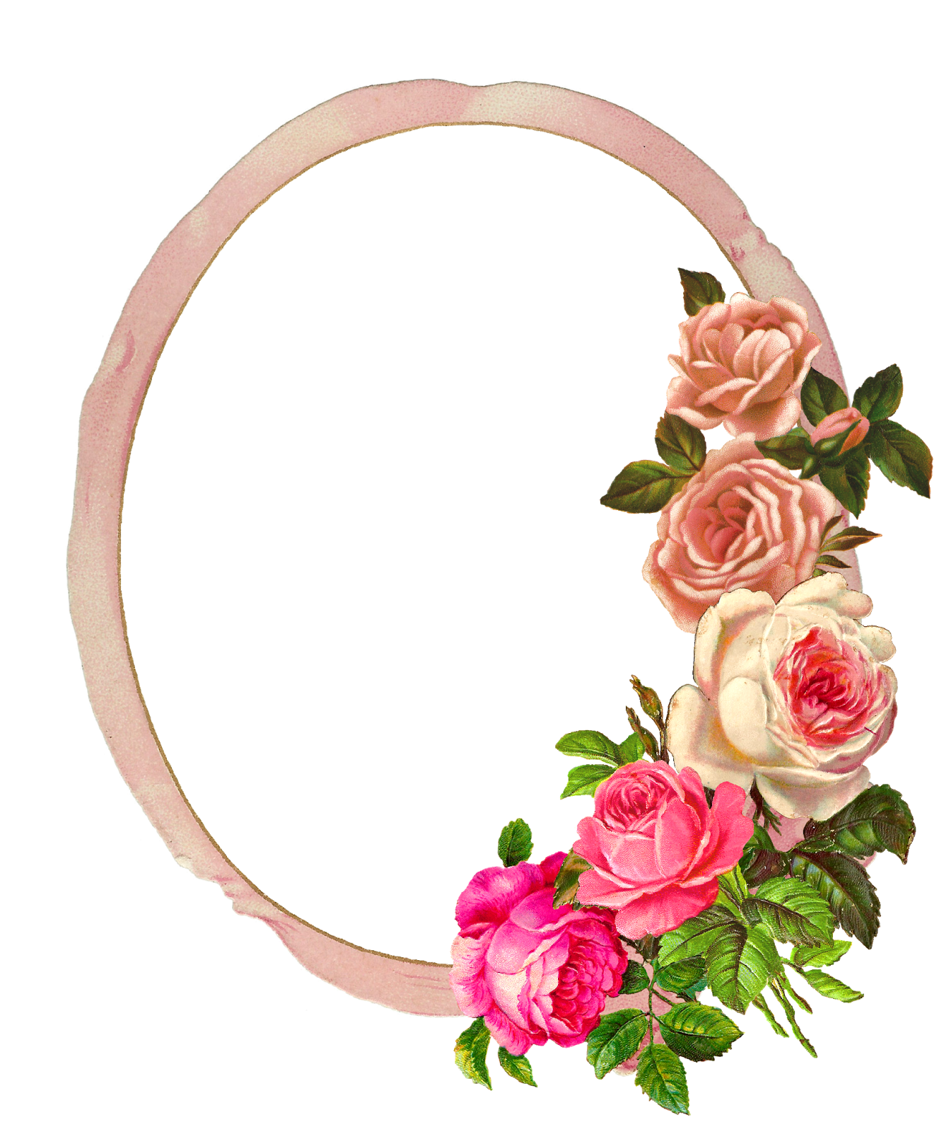 Pink roses frame png. The graphics monarch free