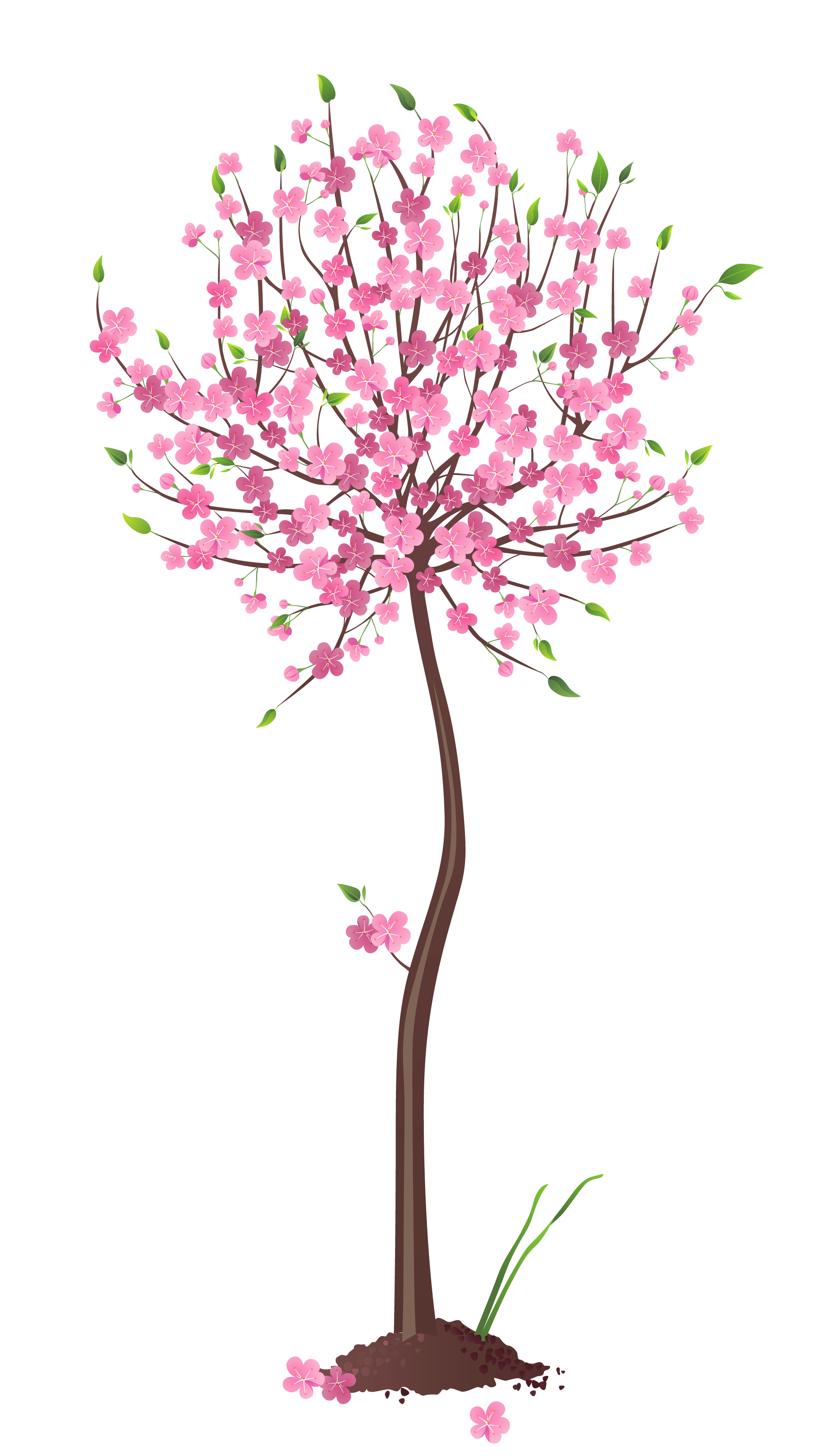 Pink tree png. Spring clipart gallery yopriceville