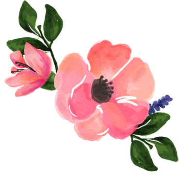 Pink watercolor flowers png. Watercolour flower collection resize