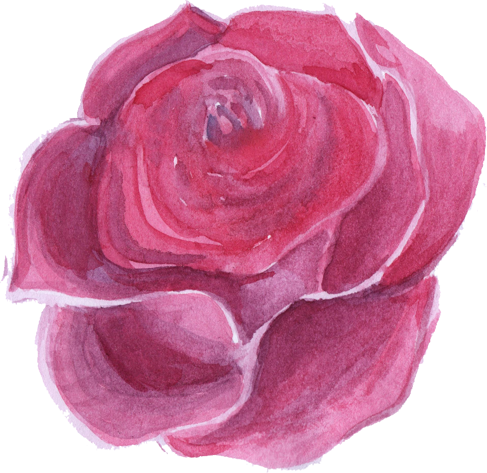 Pink watercolor flower png. Beautiful transparent onlygfx