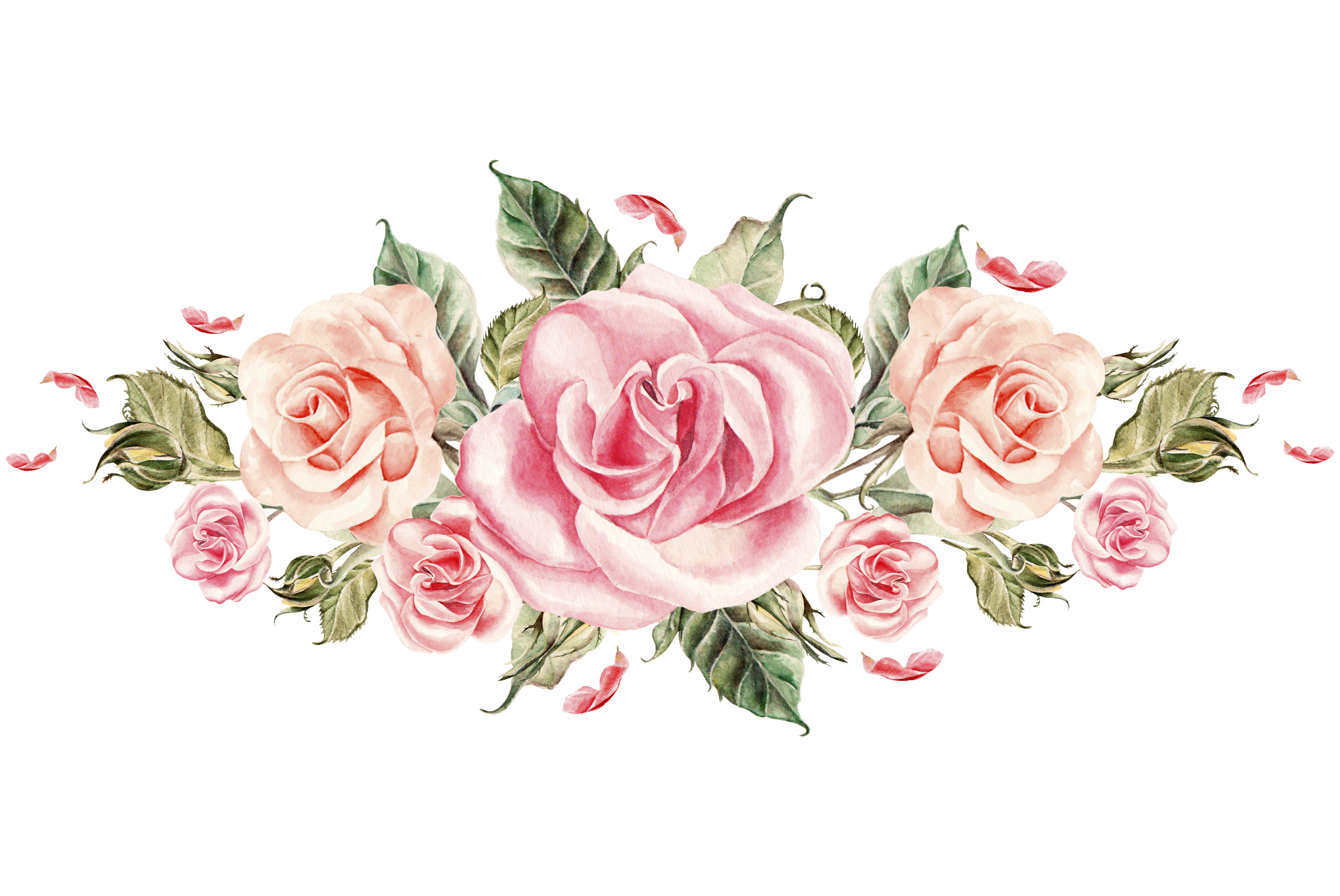 Pin by ali say. Rosas vector flores clip transparent library