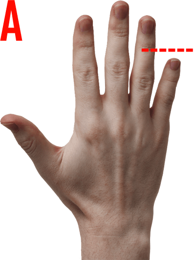 Pinky finger png. The size of your