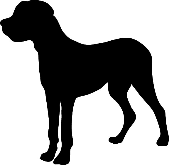 Pitbull clipart outlines. Silhouette at getdrawings com