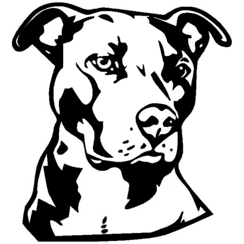 Pitbull clipart outlines. Cartoon drawing at getdrawings