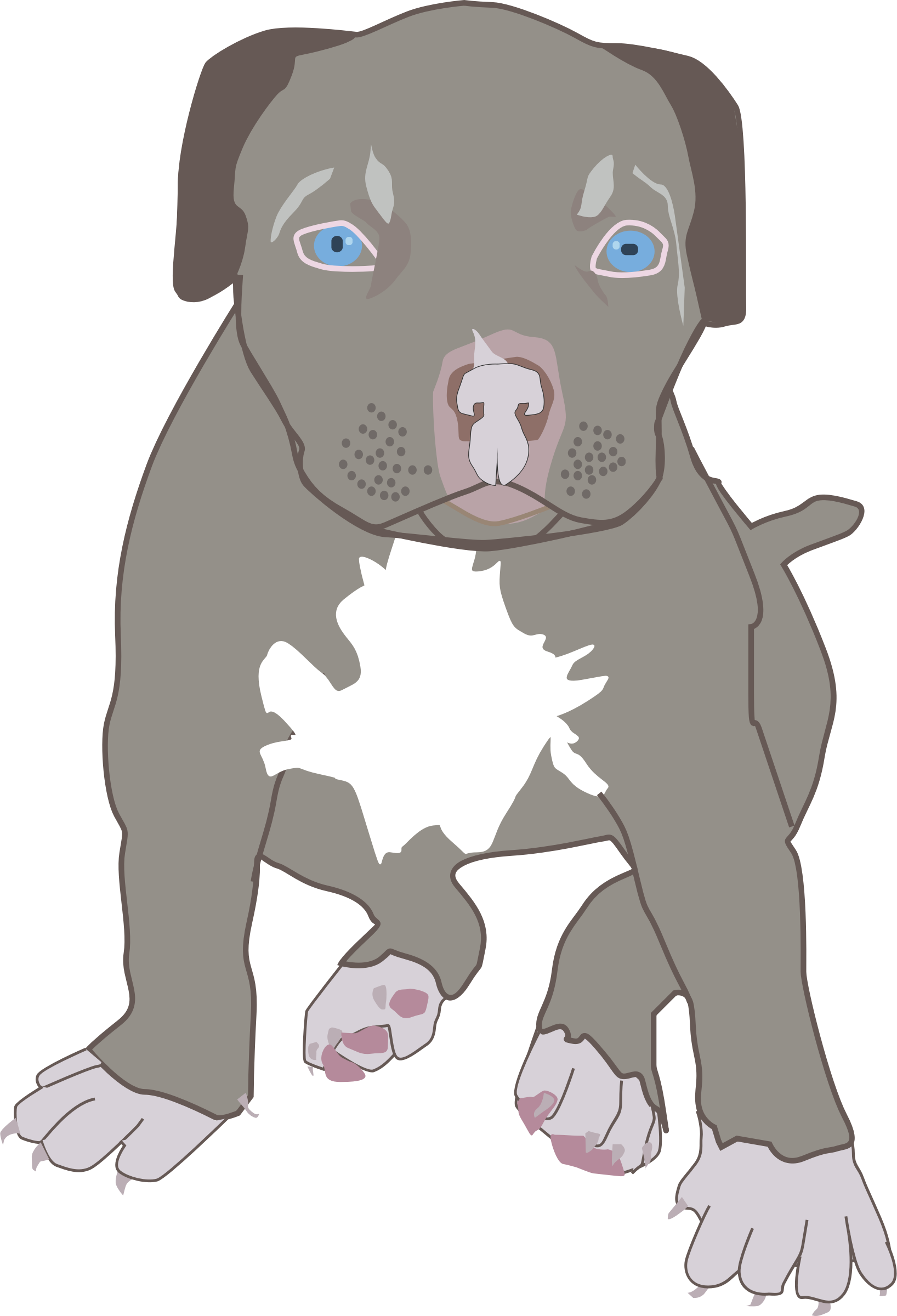 Clipart pit bull big. Puppy svg image black and white stock