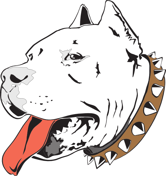Pitbull face png. Pit bull drawing at