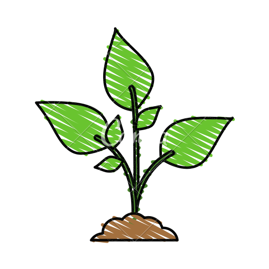 Plant cartoon png. Group with leaves in