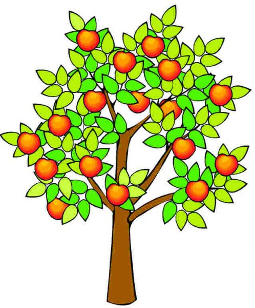 Plant clipart fruit plant. Tree at getdrawings com