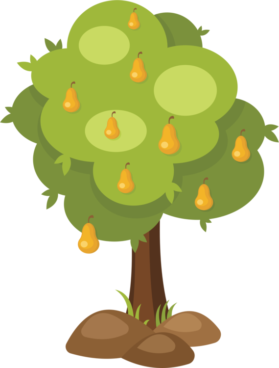 Plant clipart fruit plant. Tree branch asian pear