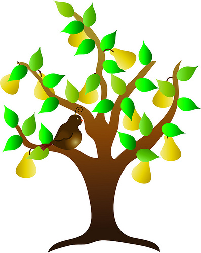 Plant clipart fruit plant. Tree panda free images