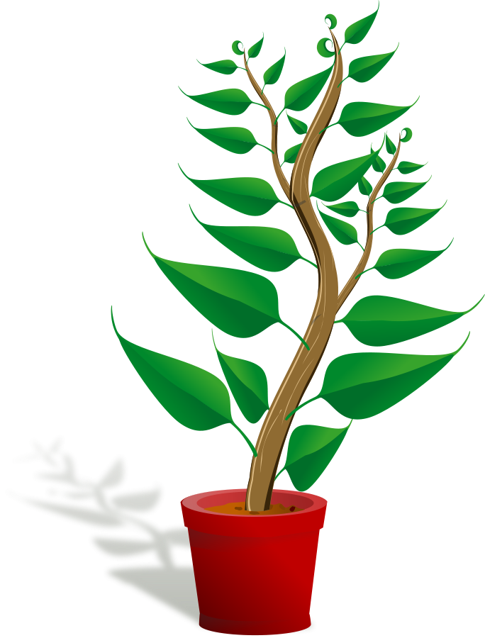 Plant clipart green plant. Free pictures download clip