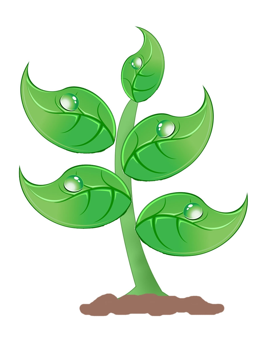 Plant clipart green plant. Best of plants gallery