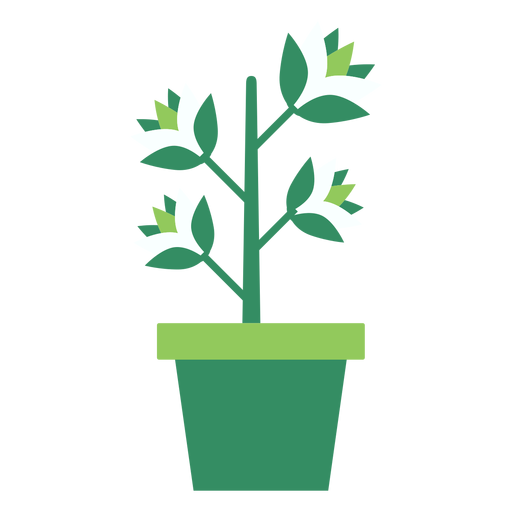 Plant vector png. Green flowerpot with clipart