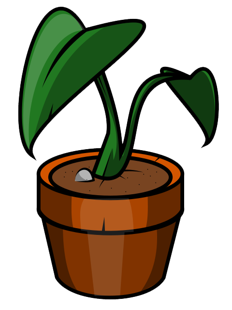Plant clipart potted plant. Free flower pot images