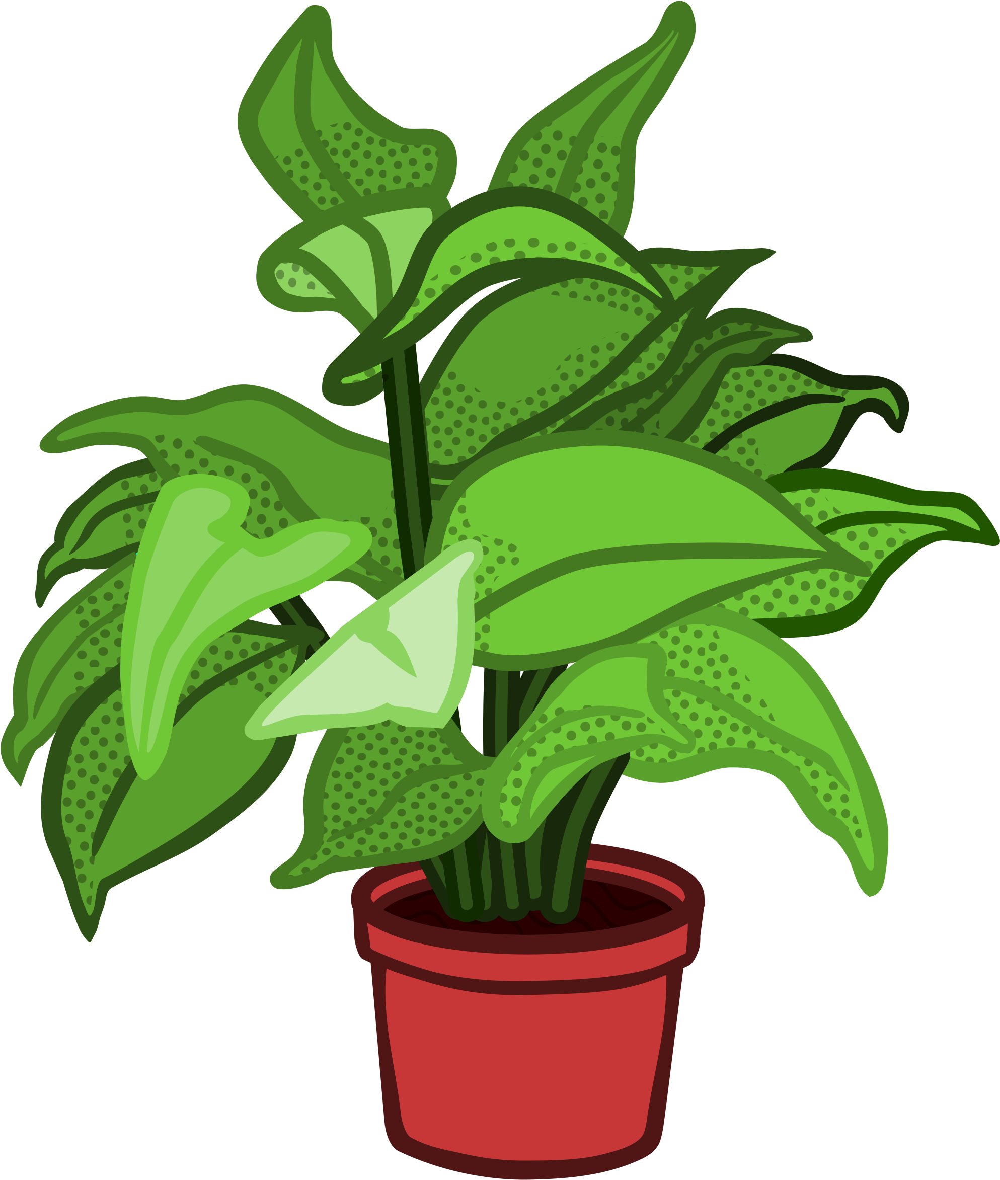 Plant clipart potted plant. Related plants x