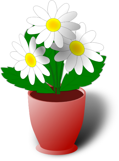 Plant clipart potted plant. Plants and flowers png