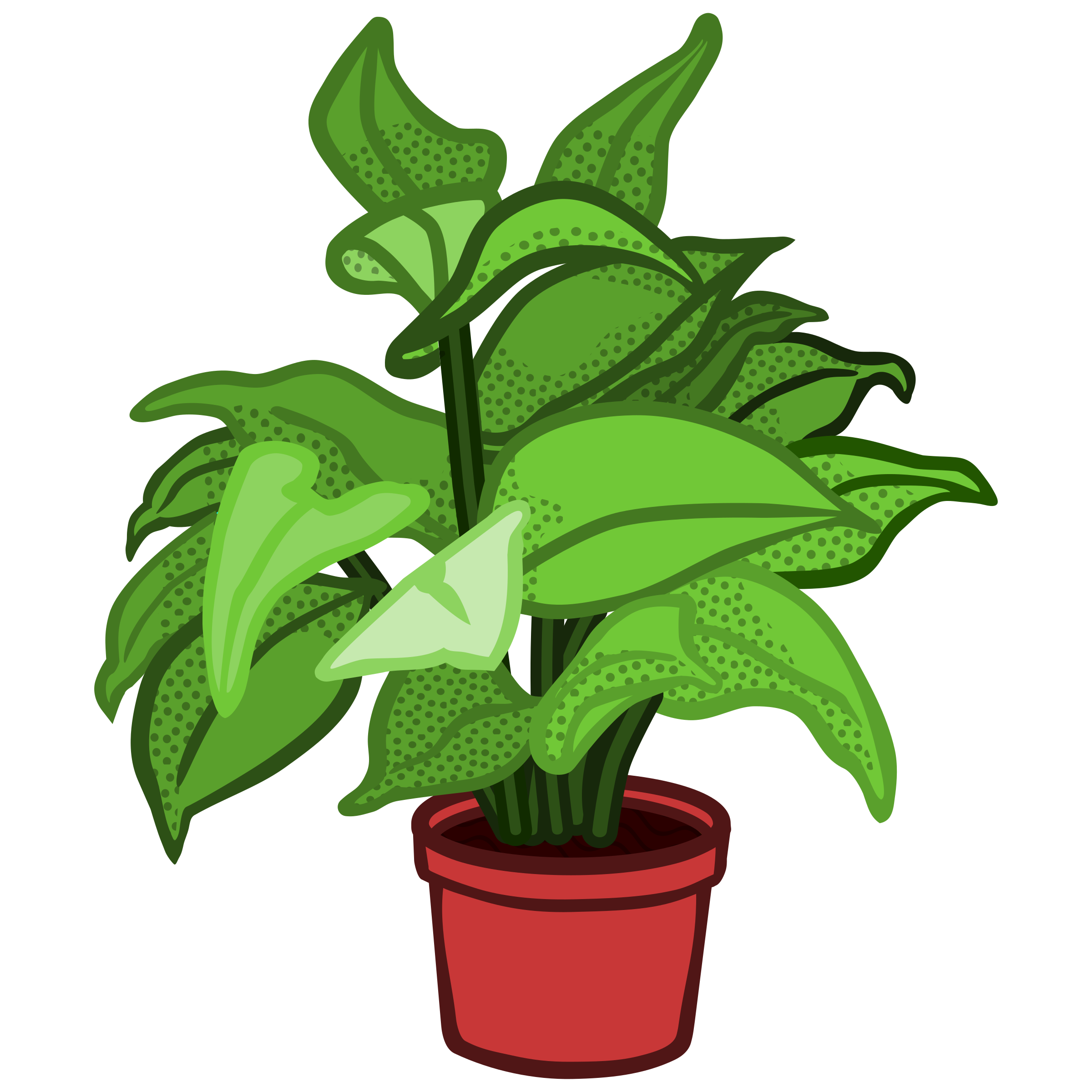 Potted plants png. Clipart plant coloured big