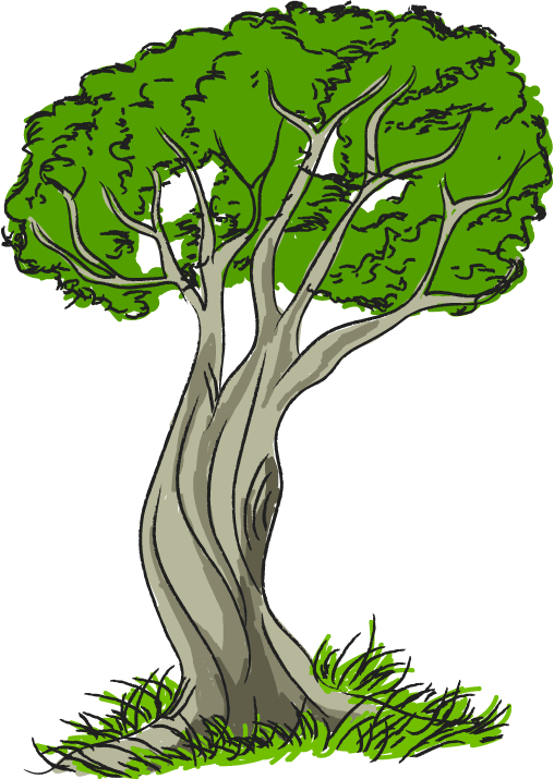Swamp tree free download. Nature clipart image free