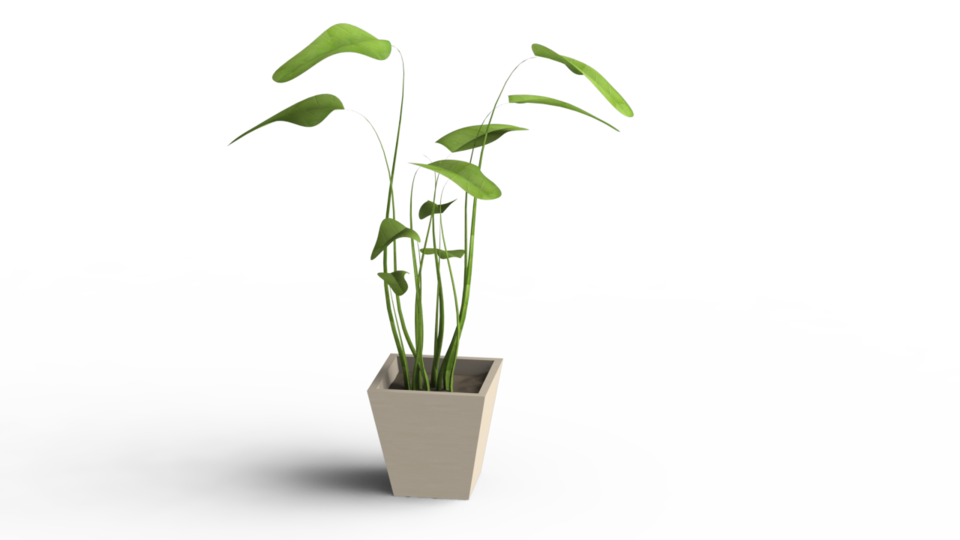 Potted plants png. Plant pot d cad