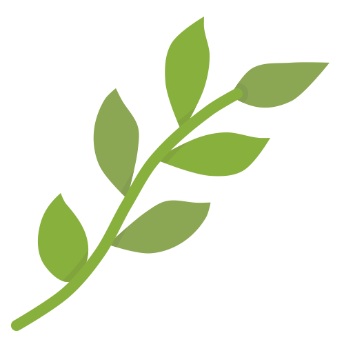 Plant stem png. Leaf icon ico