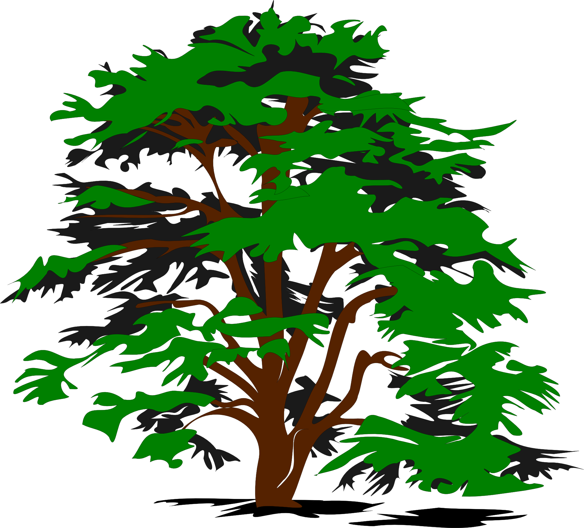Plant vector png. Free tree download clip