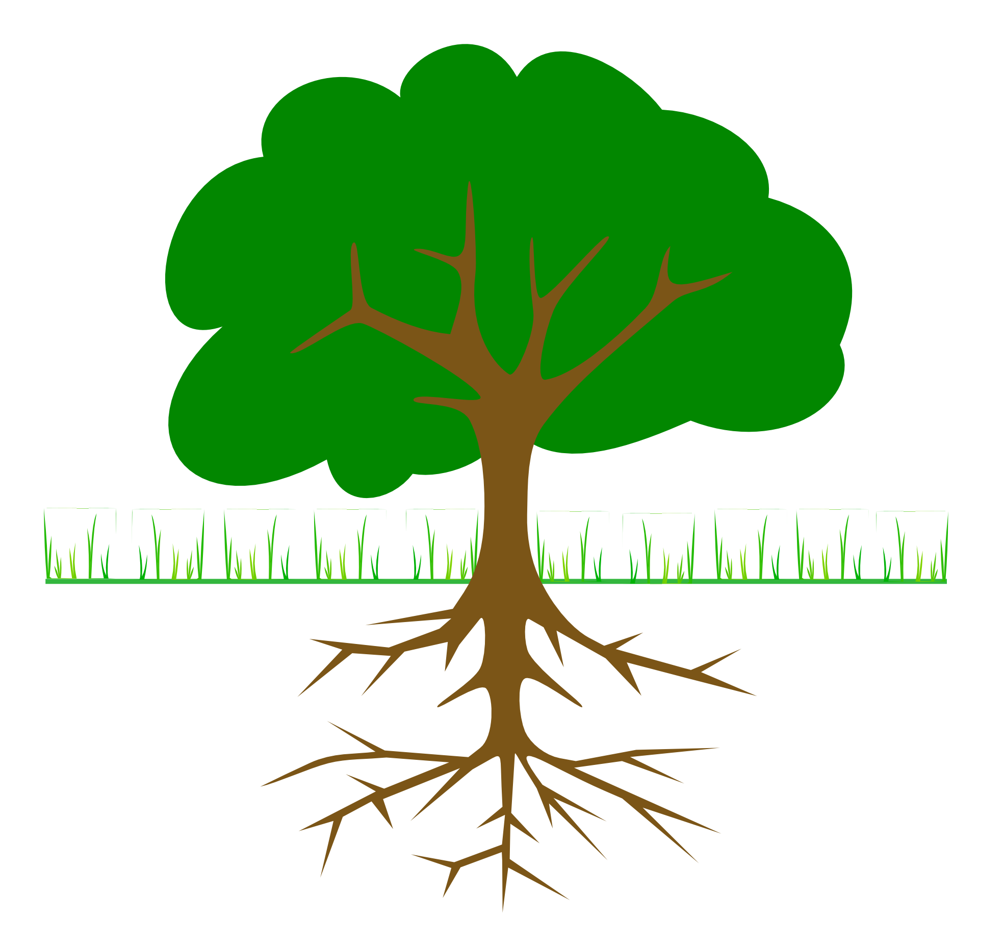 Plant with roots png. Collection of clipart