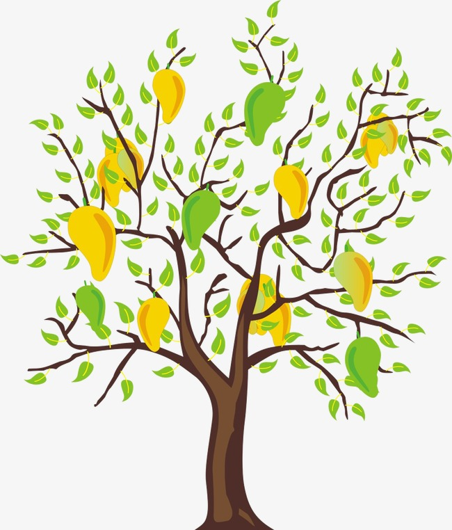 Plants clipart mango tree. Hand painted png image