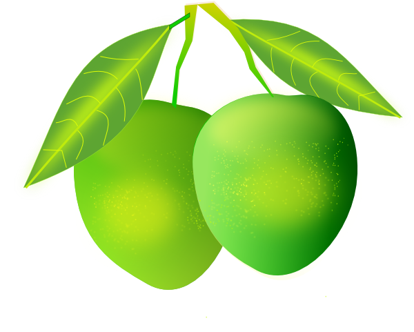 Plants clipart mango tree. Clip art at clker