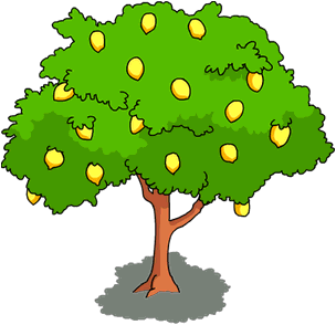 Lemon clipart lemon tree. Mango fruit pencil and