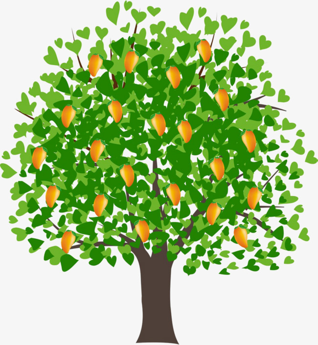 Plants clipart mango tree. Leaves hand drawing fruit