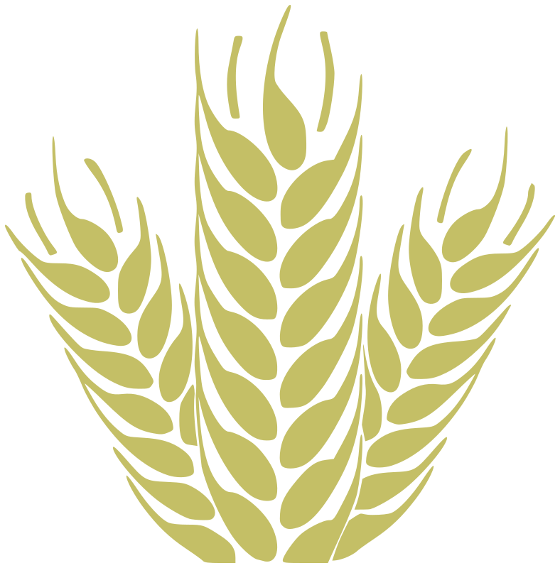 Wheat clipart wheat plant. Transparent great free silhouette