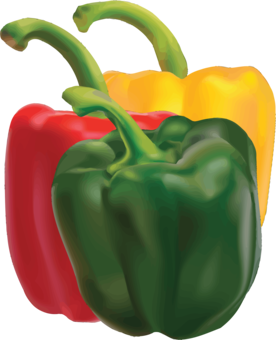 Plants clipart sweet pepper. Bell chili con carne