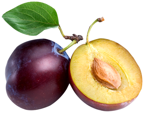 Plum clipart cute. Gallery fruit png