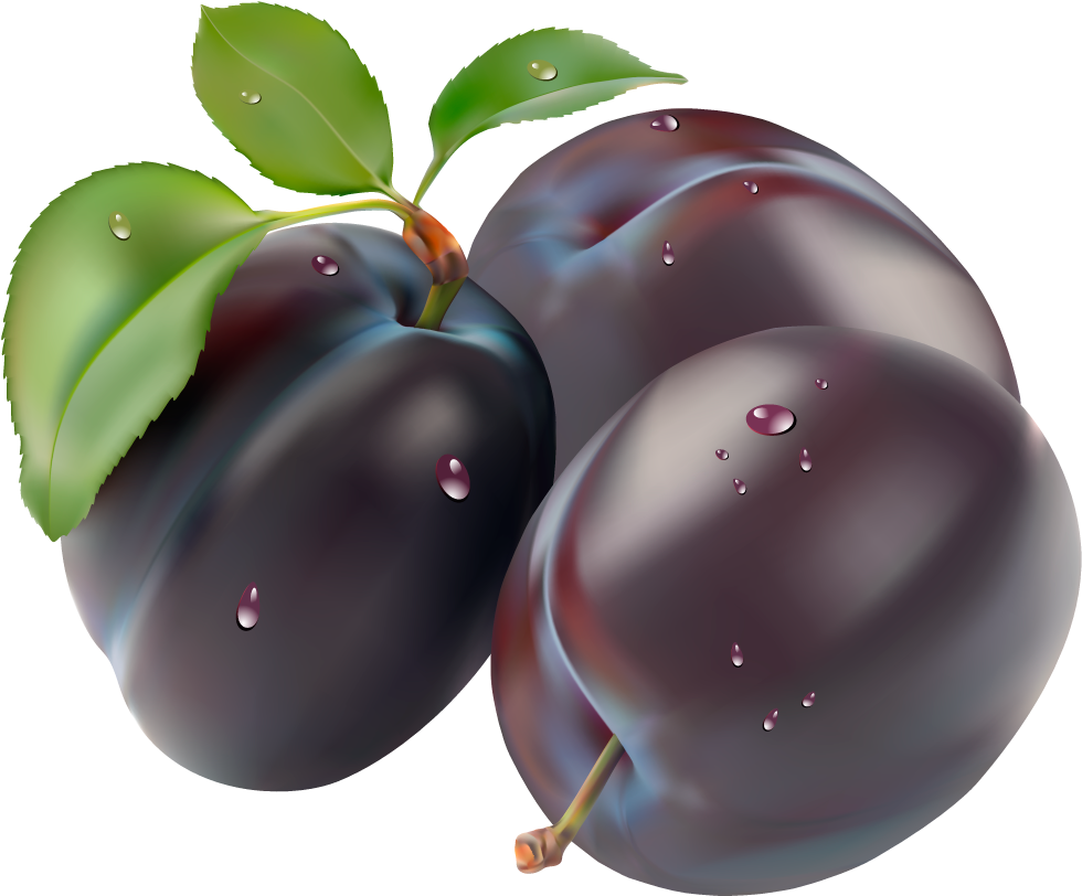 Plum clipart purple berry. Png images free download