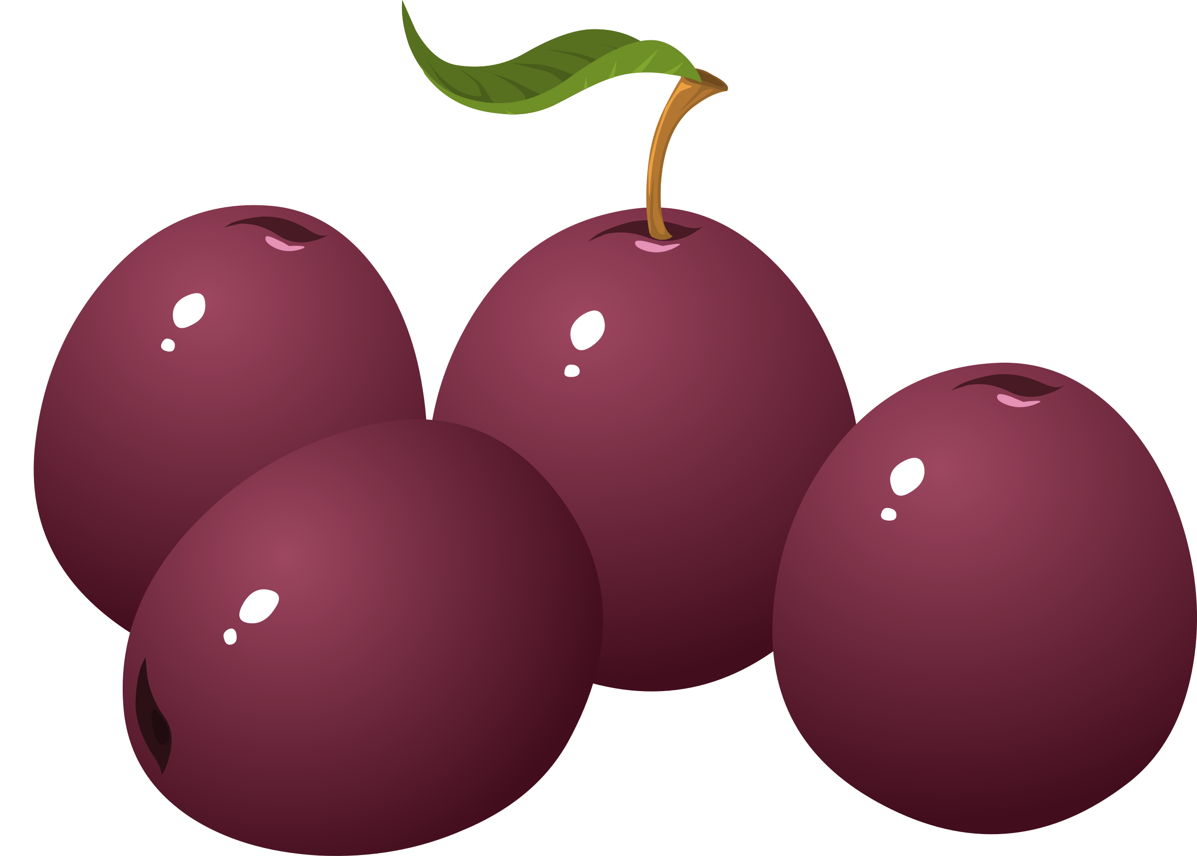 Plum clipart plum cake. Food icons png free