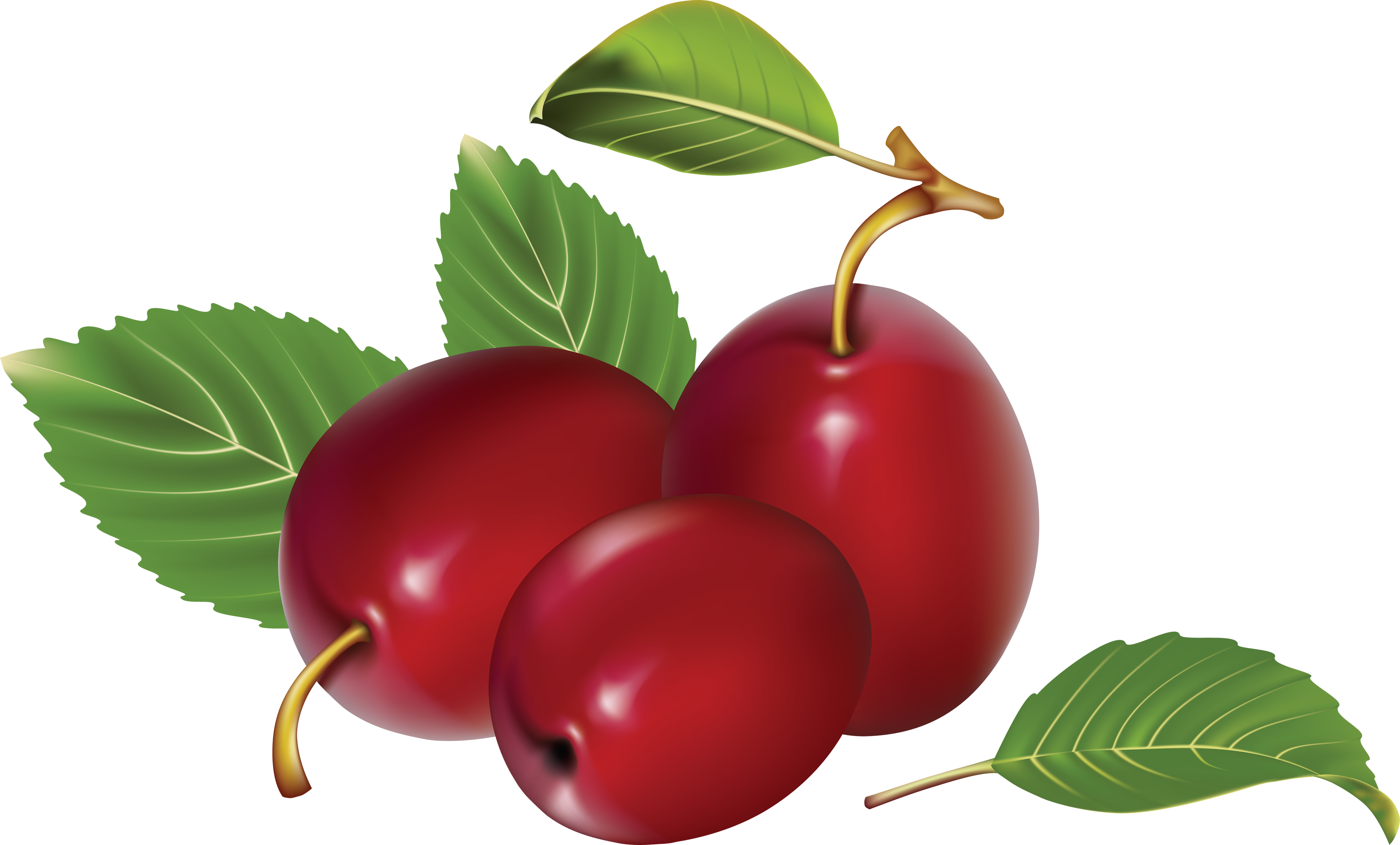 Png image . Plum clipart plum cake clip free stock